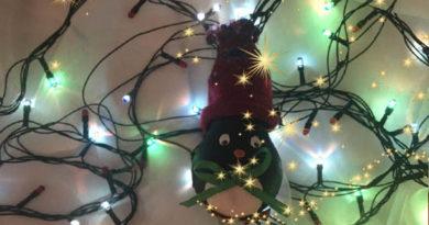 новогодняя-игрушка-пингвиненок-из-лампочки